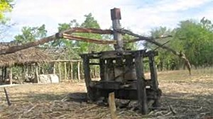 cane mill_1024